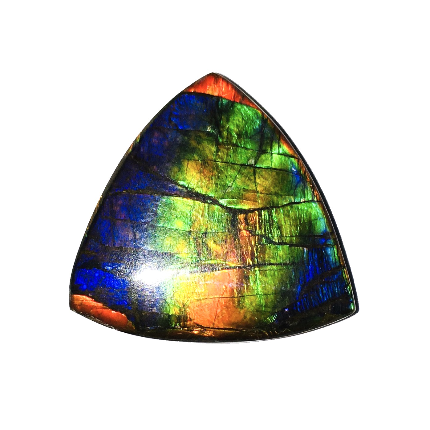 Ammolite Gemstone By Magical Collection